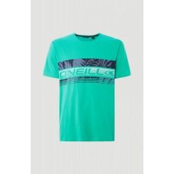 O'NEILL LM PUAKU T-SHIRT (green) M